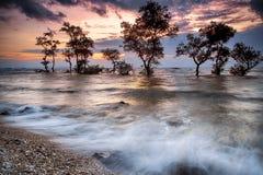 夜射击,光,风景,自然,天空,太阳,海景, 图库摄影