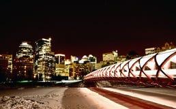 夜射击卡尔加里亚伯大加拿大 库存图片