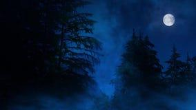 夜森林有薄雾的沼泽和月亮
