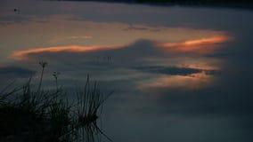 夜河日落云彩的湖反射在水美好的红色风景录影自然的 影视素材