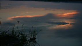 夜河日落云彩的湖反射在水美好的红色风景自然录影的 股票视频