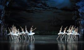夜波浪离开天鹅这天鹅湖边芭蕾天鹅湖 免版税库存照片