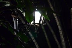 夜灯塔在森林里 免版税库存图片