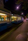 夜电车在苏黎世 库存图片