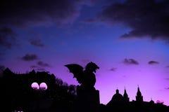 夜的龙 免版税库存图片