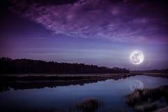 夜空和明亮的满月在河沿 平静自然bac 免版税库存照片