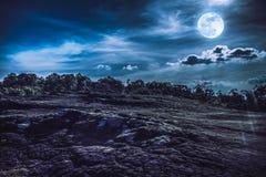 夜空风景与满月,平静自然backgrou的 免版税图库摄影