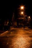 夜街道 免版税库存图片