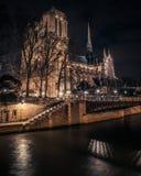 夜间光的大教堂Notre Dame 免版税图库摄影