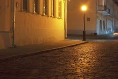 夜间时间的米斯克。 免版税库存图片