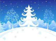 夜间森林冬天 免版税库存照片