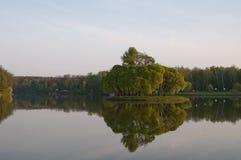 夜间池塘 图库摄影