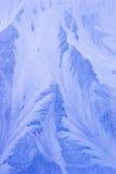 夜间霜模式 免版税图库摄影