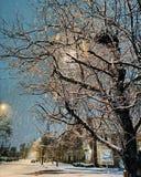 夜雪 免版税图库摄影