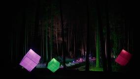 夜风景在公园,照亮由立方体装饰灯笼 股票录像