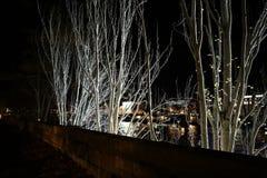 夜风景在巴黎, 2017年12月 图库摄影
