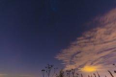 夜风景用草本、星和云彩 免版税库存照片