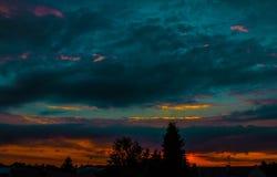 夜风景,以城市和树为背景在日落 自然 免版税库存图片