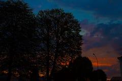 夜风景,以城市和树为背景在日落 自然 图库摄影
