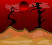 夜间在沙漠 免版税库存图片