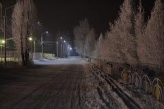 夜间山s日落ural冬天 免版税库存图片