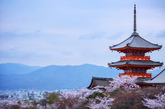 夜间 有天空和樱花的塔在背景 库存图片
