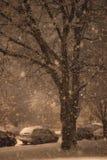 夜间雪 库存照片