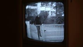 夜贼风行设法的照相机上升在篱芭 影视素材