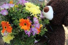 大丁草和菊花花束,在玩具熊旁边 免版税库存照片