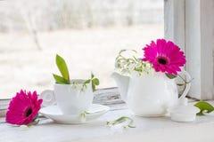 大丁草和snowdrops在窗台 库存照片