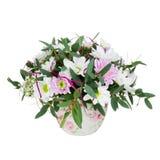 从大丁草花的花束在白色Backgroun隔绝的花瓶 免版税库存图片