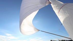 大三角帆的适当的配置在顺风的 股票录像