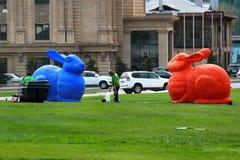 大五颜六色的兔子在巴库,阿塞拜疆 免版税库存照片
