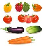 大五颜六色的组成熟蔬菜 免版税图库摄影