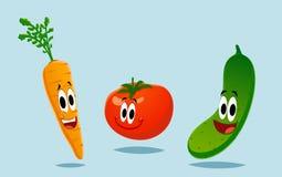 大五颜六色的组蔬菜 免版税库存图片