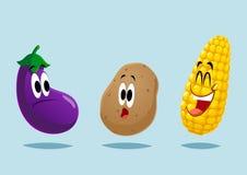 大五颜六色的组蔬菜 免版税库存照片