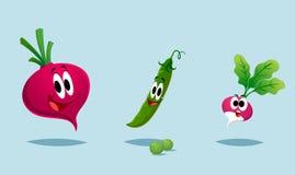 大五颜六色的组蔬菜 库存照片