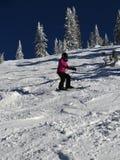大人物的滑雪者 免版税库存图片