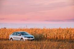 大众波罗停放在秋天领域的乡下公路附近的汽车轿车 免版税库存照片