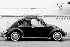 大众甲壳虫经典之作汽车 库存照片