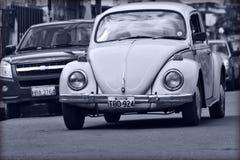 大众甲壳虫黑白照片 免版税图库摄影