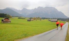 大农场农田的秋天风景在米滕瓦尔德附近的一个有雾的早晨 库存照片