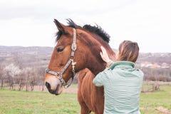 大农场的美丽的少妇有一匹棕色马的 库存图片