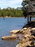 大冰砾排行森林Canyon湖银行  库存照片