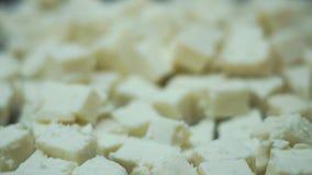 大切片在一个碗的乳酪在慢动作的一顿自助餐 影视素材