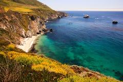 大加利福尼亚海岸sur 图库摄影
