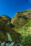 大加那利岛,内地nortern零件, Barranco de Azuaje 免版税库存照片