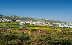 大加那利岛,内地nortern零件, Barranco de Azuaje 图库摄影