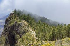 大加那利岛, 5月 免版税库存照片