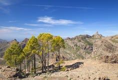 大加那利岛, Las Cumbres -海岛的最高的地区 库存图片